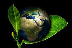 earth-405096__180.jpg