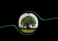 ecology-450591__180.jpg